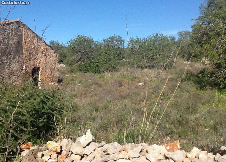 6184258272-terreno-com-ruina.jpg