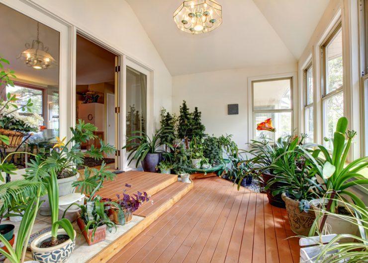 jardim-dentro-casa